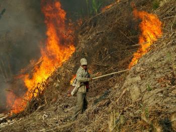 孟加拉部落的刀耕火种