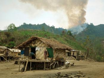 孟加拉部落的刀耕火种02