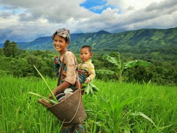 孟加拉部落的刀耕火种08
