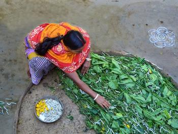 印度手工丝织业2