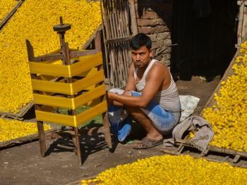 印度手工丝织业7