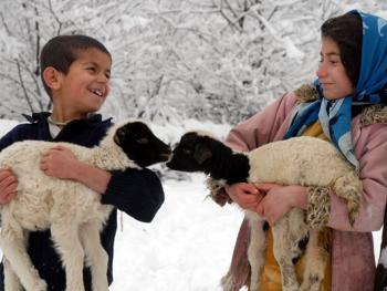 塔利什山冬季生活12