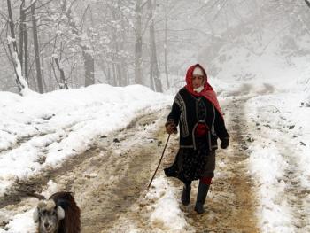 塔利什山冬季生活02