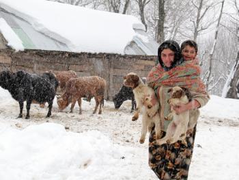 塔利什山冬季生活04