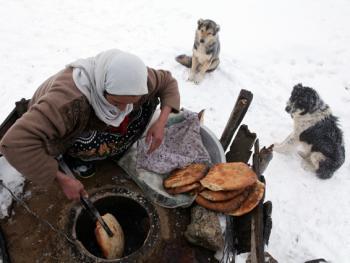 塔利什山冬季生活06
