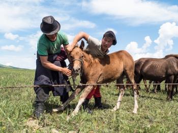 蒙古年轻牧民的生活11
