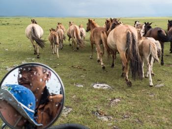 蒙古年轻牧民的生活12