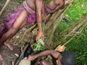 瓦努阿图的南巴斯人13