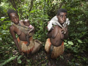 中非森林中的巴亚卡人11