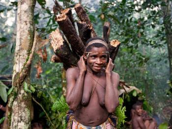 中非森林中的巴亚卡人12