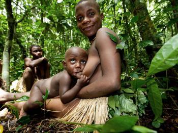 中非森林中的巴亚卡人