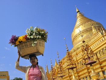 缅甸清凉涂面塔纳卡09