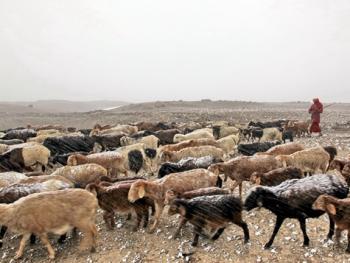 生活在红其拉甫的塔吉克人12