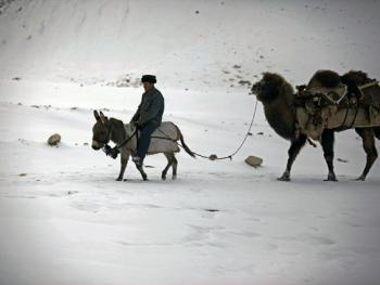 生活在红其拉甫的塔吉克人13