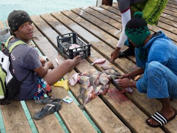 佛得角渔民的捕鱼生活11