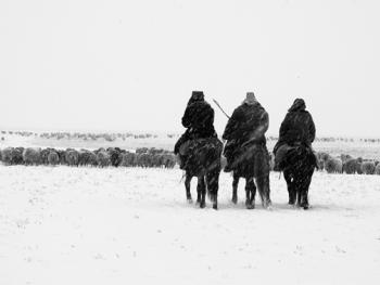 新疆北部哈萨克人冬季转场02