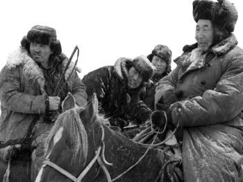 新疆北部哈萨克人冬季转场03