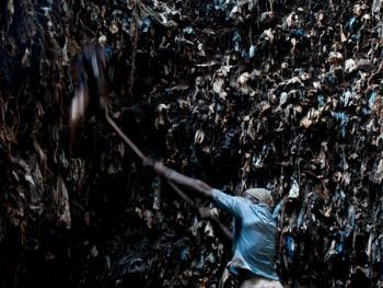 几内亚垃圾场的拾铁青年05