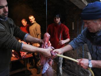 法国南部乡村宰猪习俗12
