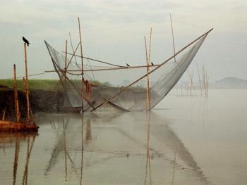 孟加拉放竹排04
