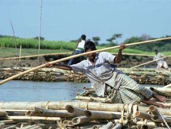 孟加拉放竹排08