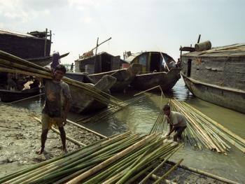 孟加拉放竹排09
