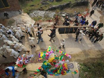 水族葬仪11