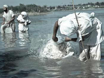 曼达教洗礼仪式06