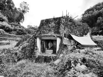 托拉雅人的葬俗10