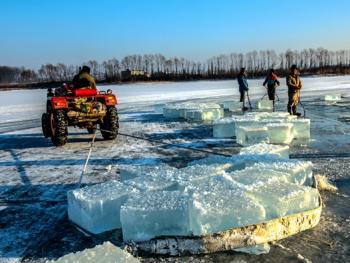 隆冬采冰06