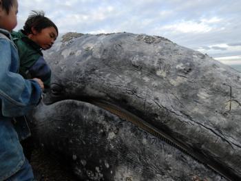 楚科奇人捕鲸10