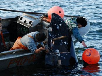 楚科奇人捕鲸06