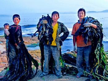 晒海带的彝族人10