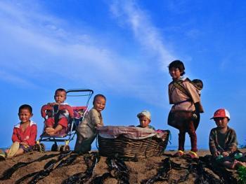 晒海带的彝族人09