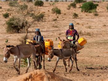尼日尔干旱地区人畜用水方式11