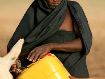 尼日尔干旱地区人畜用水方式13