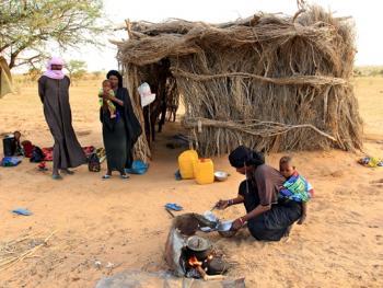 尼日尔干旱地区人畜用水方式14