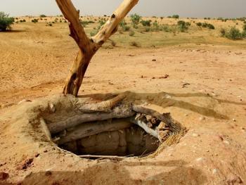 尼日尔干旱地区人畜用水方式05