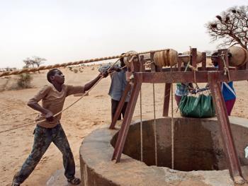 尼日尔干旱地区人畜用水方式
