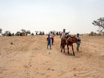 尼日尔干旱地区人畜用水方式08