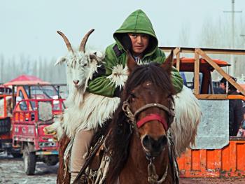 北疆乡村巴扎