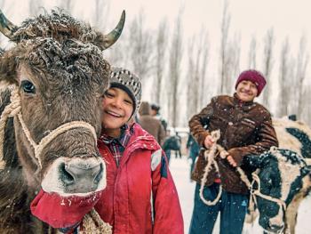 北疆乡村巴扎8