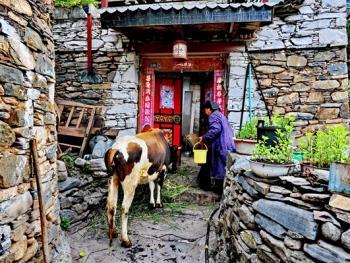 西索嘉绒藏族民居07