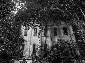 加尔各答殖民时期的欧式建筑13