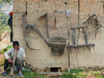 哈尼梯田的稻作农耕