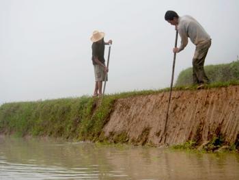 哈尼梯田的稻作农耕04