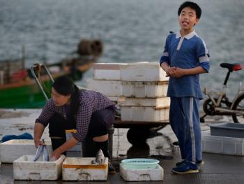 蛇口渔港10