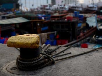 蛇口渔港13