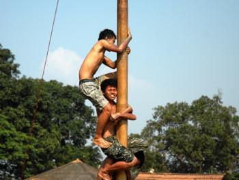 国庆日的爬槟榔树比赛03