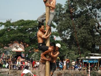 国庆日的爬槟榔树比赛05